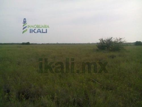 venta terreno de 10.85 hectáreas frente a la laguna de tampamachoco en tuxpan veracruz, (250 pesos m ², se vende todo completo) ubicado rumbo a playa en una zona donde no se inunda. la entrada a los