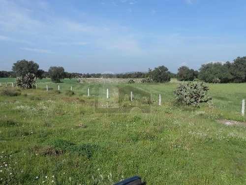 venta  terreno de 22,500 m2 en huitzila, tizayuca, hidalgo (km 48 carretera mexico - pachuca),