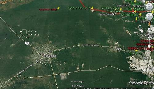 venta terreno de 300 hectáreas en hunucmá, excelente oferta!!!