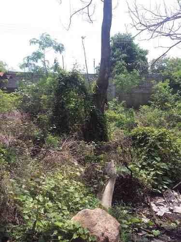 venta terreno en acapulco, llano largo