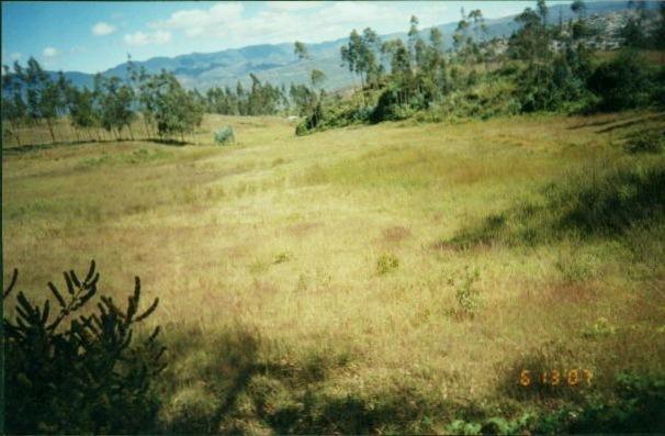 venta terreno en chachapoyas