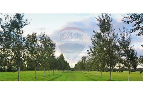 venta terreno en pinares del sur