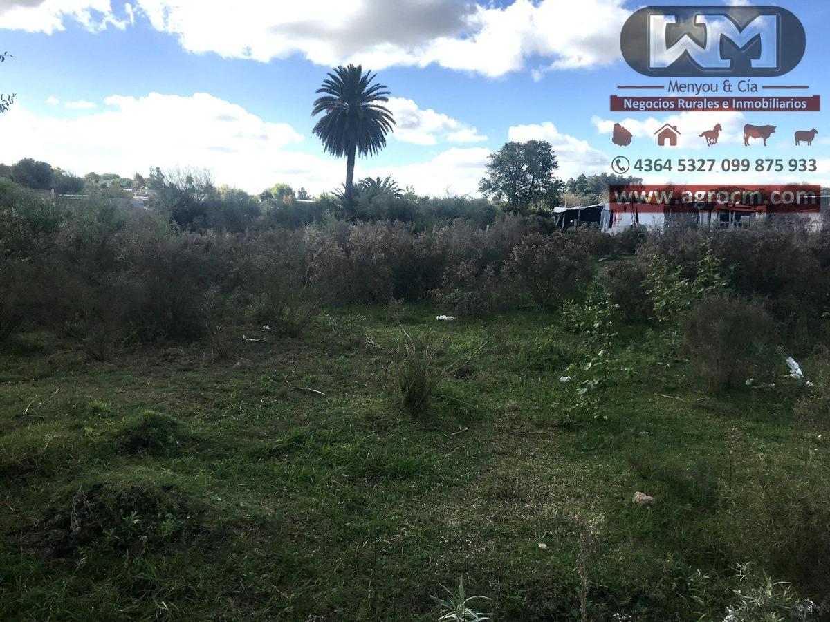 venta terreno en trinidad flores 400m2 frente 40mts triangul
