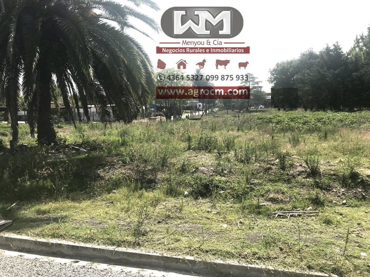 venta terreno en trinidad flores esquina 1242 m2 41 mts x 31