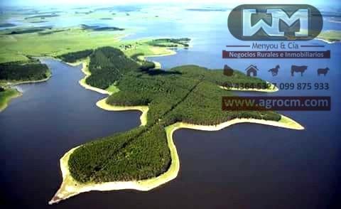 venta terreno flores 10000m2 4 cabañas en lagos de andresito