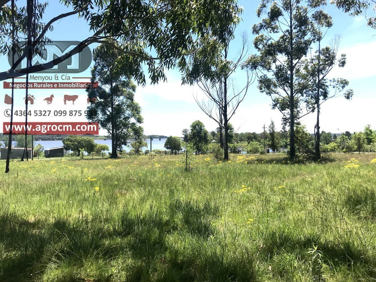 venta terreno flores 5000 m2 4 cabañas en lagos de andresito