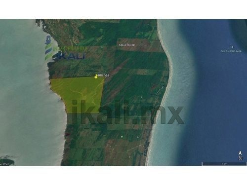 venta terreno ganadero 400 hectáreas frente laguna de tamiahua veracruz, frente a la laguna de tamiahua veracruz, en área agrícola y ganadera en tamiahua veracruz, tiene una vista hermosa hacia la la