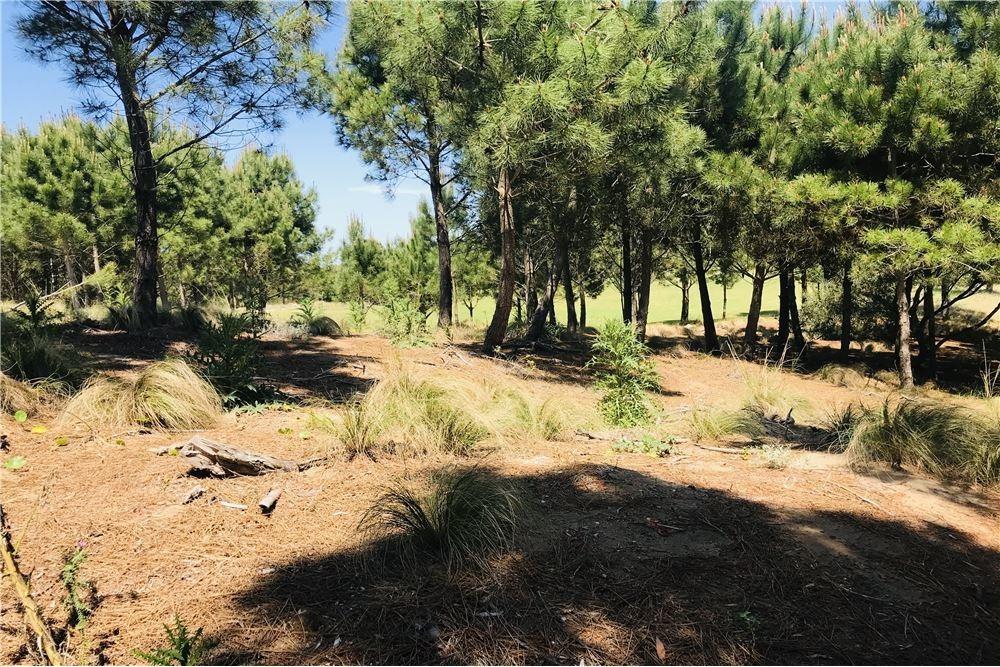 venta terreno golf ii 314,costa esmeralda