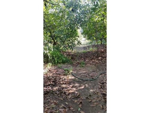 venta terreno las acacias, peñablanca