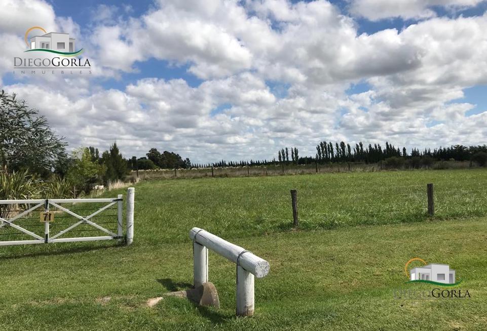 #venta terreno - lote en uribelarrea - lobos