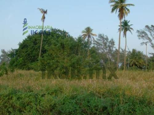 venta terreno playa tuxpan veracruz, junto a la playa 1.4 hectáreas, se encuentra al borde de carretera a la termoeléctrica a 100 metros de la orilla de la costa, 173 m. de borde al camino, con 14000