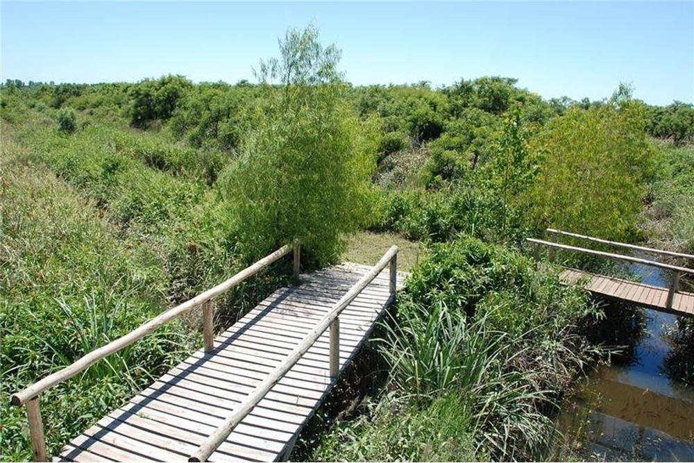 venta terreno/lote 1 ha en el delta-tigre-dos rios