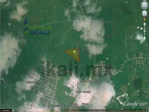 venta terrenos tuxpan veracruz son 6 terrenos de una hectárea cada uno aproximadamente de 50 m. x 200 m. que se encuentra ubicado a un costado del salón de eventos suterm, a la altura de la escuela a