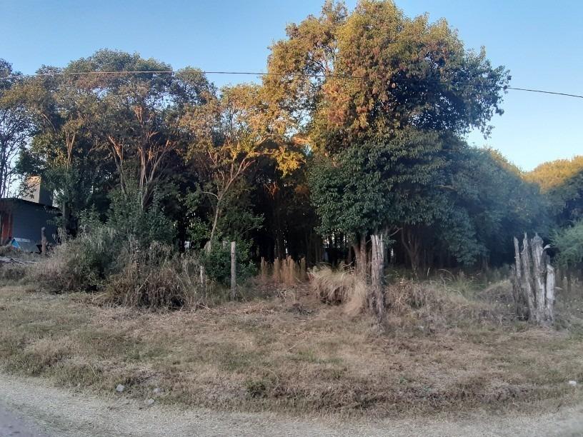 venta varios lotes villa catalina. campos verdes.
