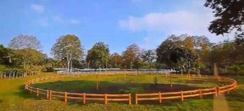 venta y renta de rancho ganadero en llera, tamaulipas.