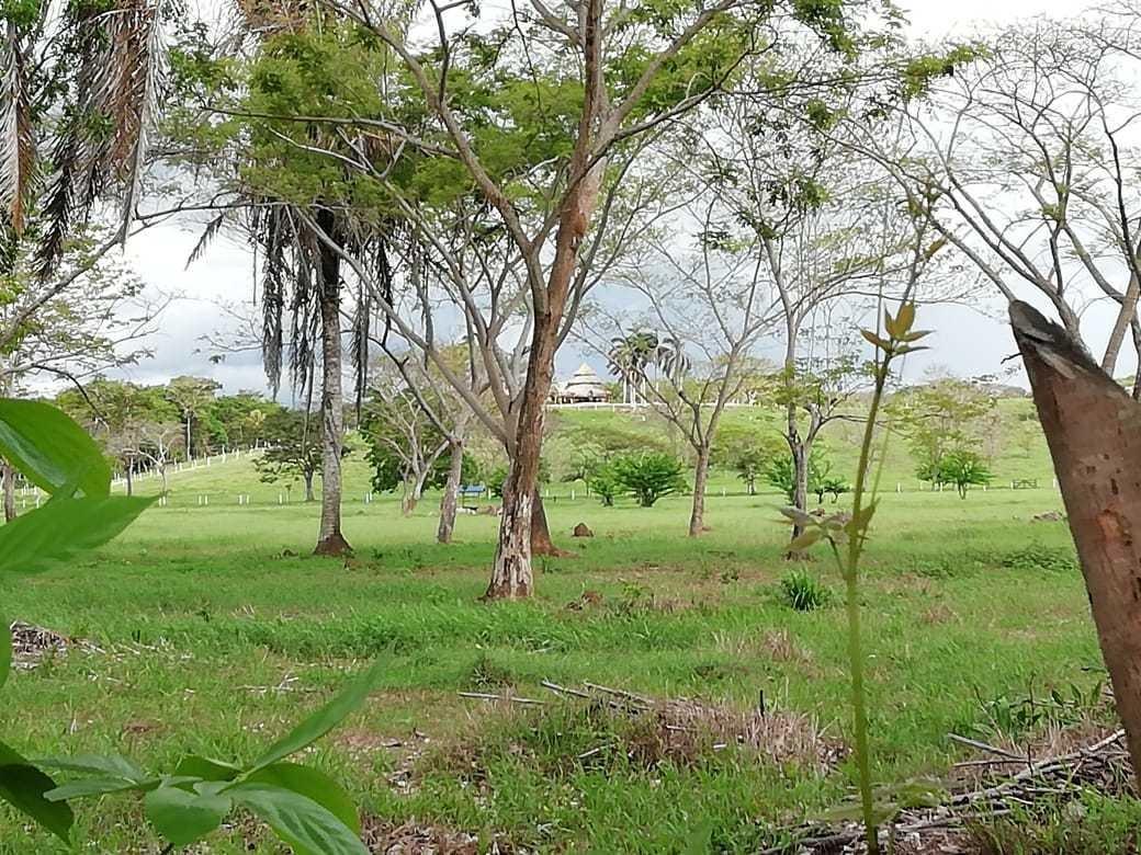 venta/cambio lote en zona turistica municipio arboletes anti