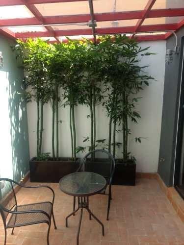 venta/oficinas/san pedro de los pinos cdmx
