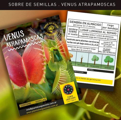 venus atrapamoscas - 36 meses - plantas carnívoras