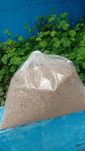 vermiculita substrato plantas cogumelos 12 l #growhugreen