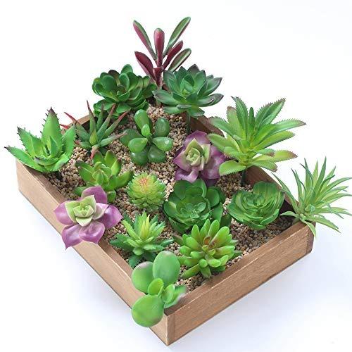 Veronica Mixto Artificial Suculentas Flores Plantas Unpotted