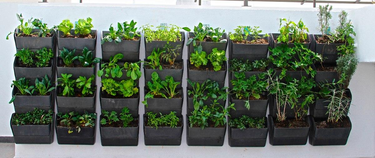 jardín vertical muro verde huerto urbano diseño jardines