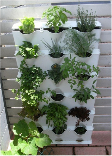 Jard n vertical huerto vertical muro verde hortalizas for Modulo jardin vertical