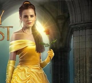 vestido disfraz princesa bella.