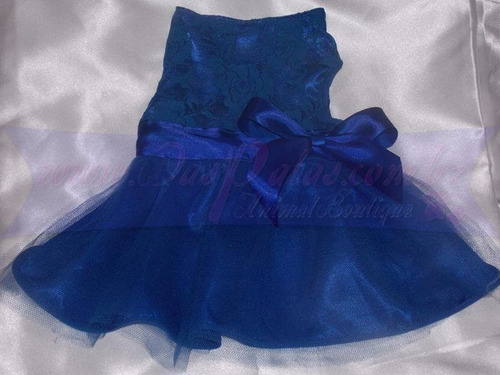 vestido luxo pet - azul
