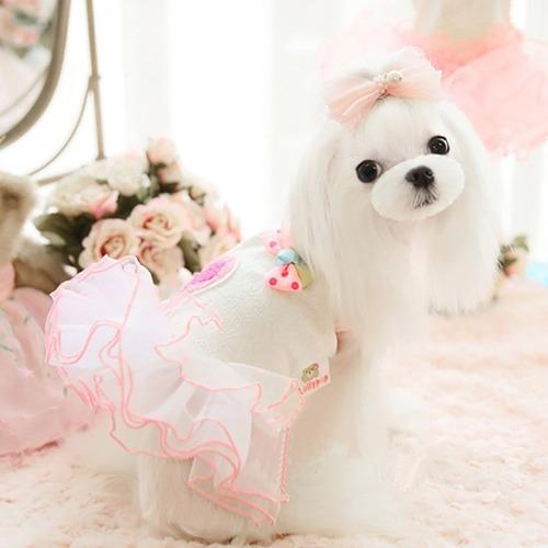 vestido para perrita