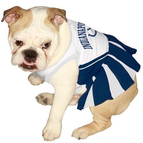 vestido para perro perro
