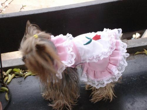 vestidos de huasita y manta con sombrero para tu mascota