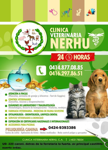 veterinaria 24 horas en puerto ordaz