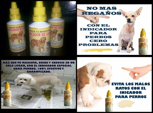 veterinaria virtual
