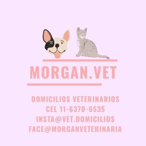 veterinaria zona norte