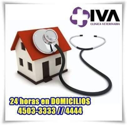 veterinario a domicilio las 24 horas!