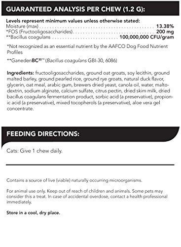 vetriscience probiótico todos los días para gatos, digestiv