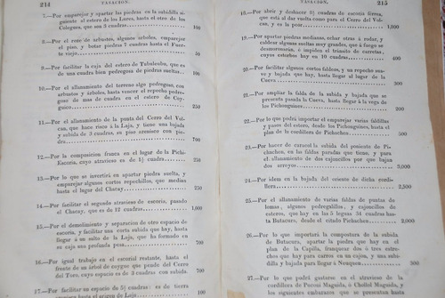 viaje concepción antuco andes bs aires luis de la cruz 1803