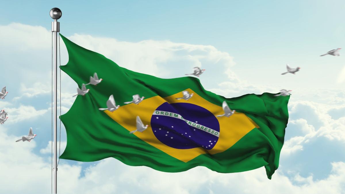 Resultado de imagem para BANDEIRA DO BRASIL TREMULANDO