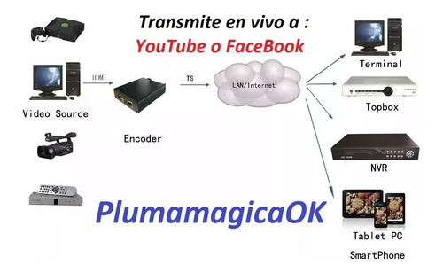 video server streaming h.264 hd hdmi - plumamagicaok