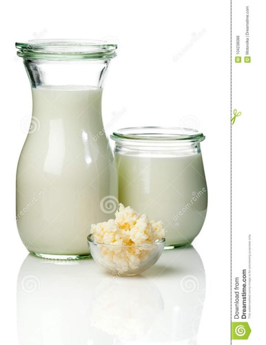 viili iogurte + kefir de leite + brinde