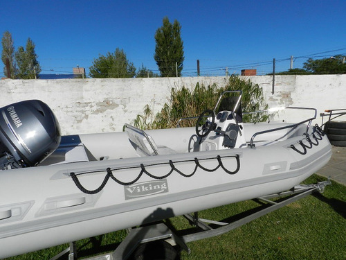 viking 4,9 mts con evinrude e-tec  60 hp ecologico