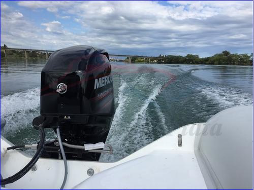 viking victory  motor mercury 4 tiempos apto lagos 0hs 2020