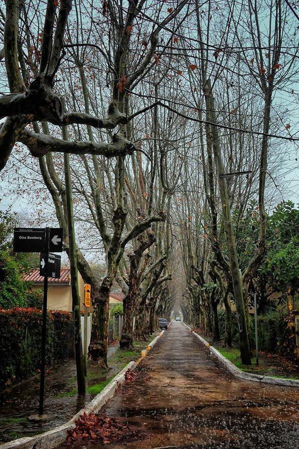 villa argentina! lote n°1