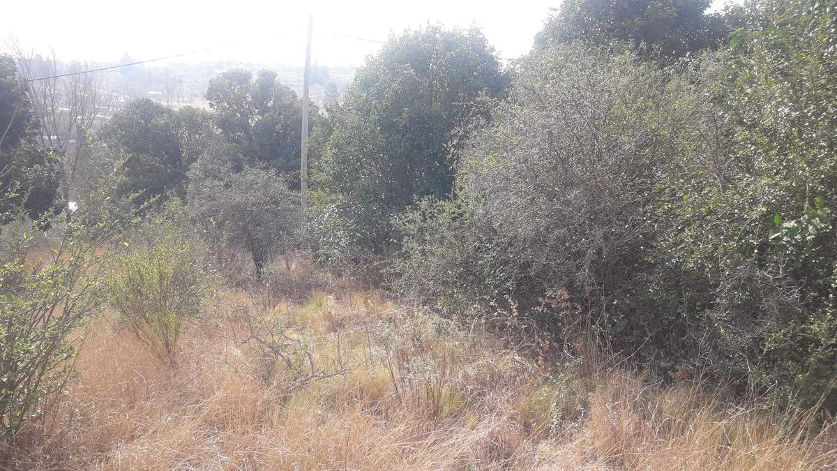 villa giardino lote en santa cecilia sobre calle tagle