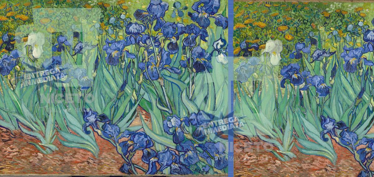 Vincent Van Gogh Los Lirios Taza Unica Coleccion Niceto
