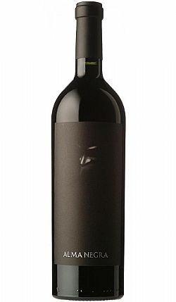 vinho argentino alma negra misterio 750ml tikal - ernesto c