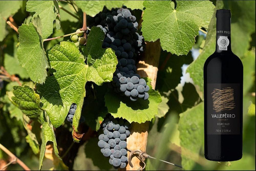 vinho tinto seco valpêrro reserva douro doc - 750ml - 2017