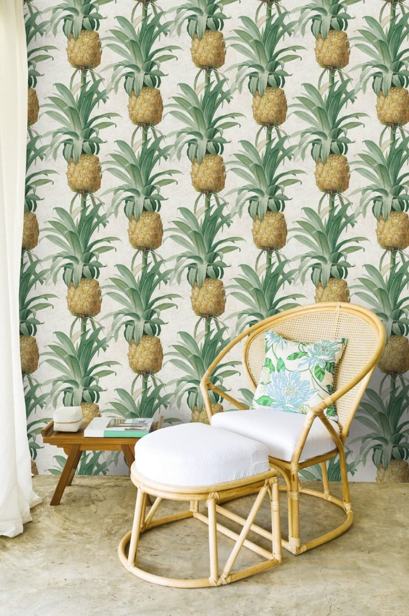 Vinilo Mural Anana Frutas Tropical Plantas Pina Pared Deco 690