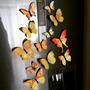 12 Mariposas Imantada Y Adhesiva Amarillas Decorativas