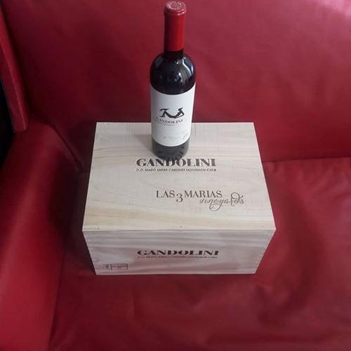 vino don melchor y otros vinos iconos